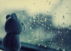 urso-chorando1